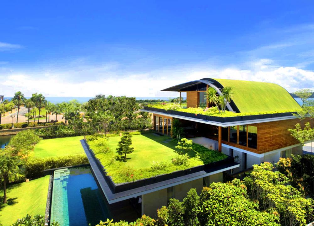 Eco-friendly-Homes