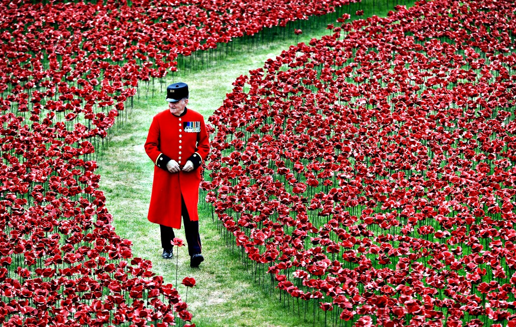 Poppies lie in Tower of London moat to commemorate WW1 victims . Tower of London marks WW1 centenary with a sea of poppies Tower of London marks WW1 centenary with a sea of poppies poppies 1024x649