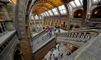 London's Most Unusual Museums