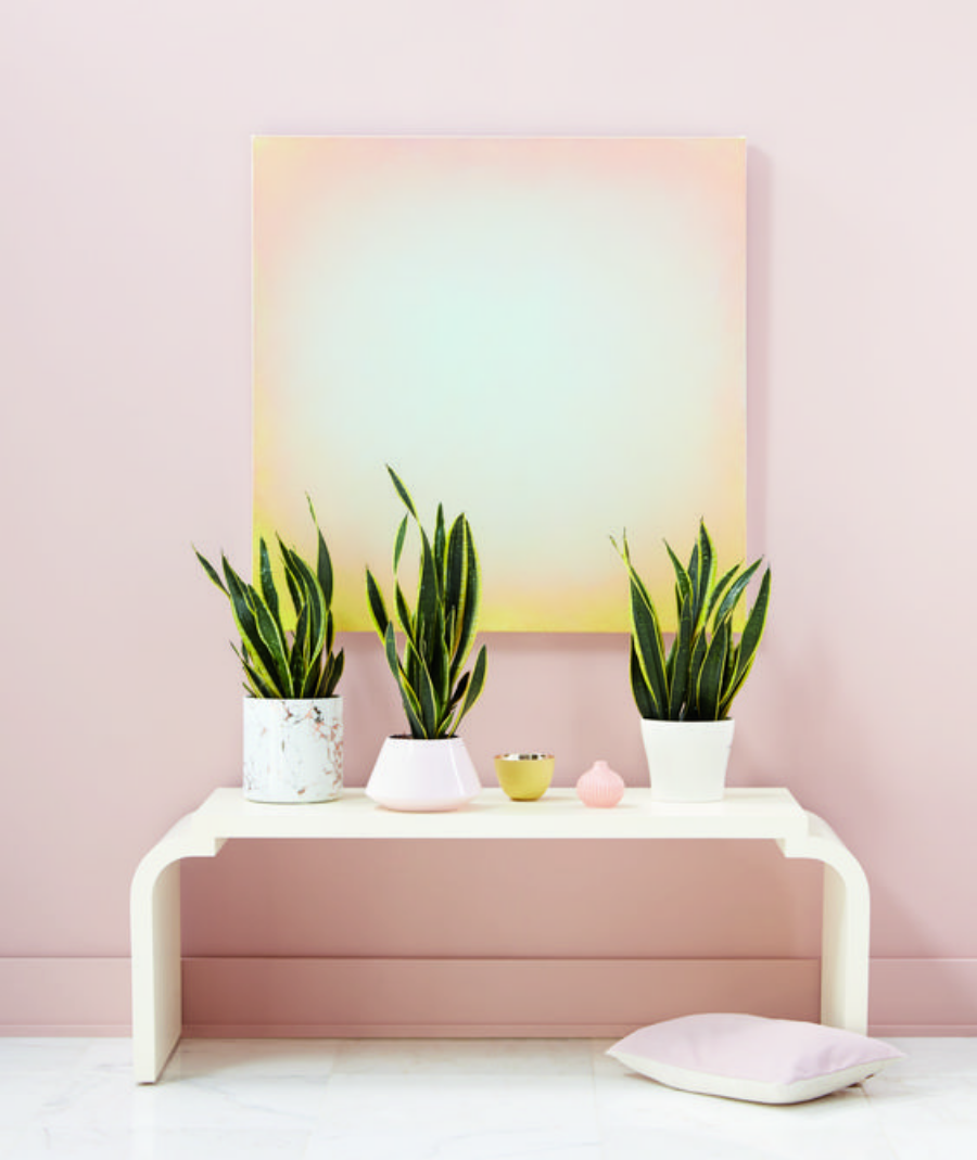 home decor Colour Trends 2019: Get Inspired for your next Interior Design Project canva photo editor 45